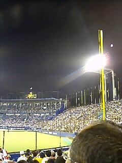 野球観た!